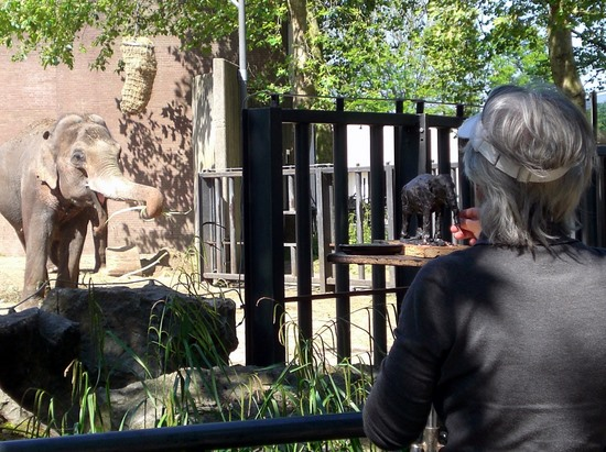 Sculptor in the zoo, Amsterdam