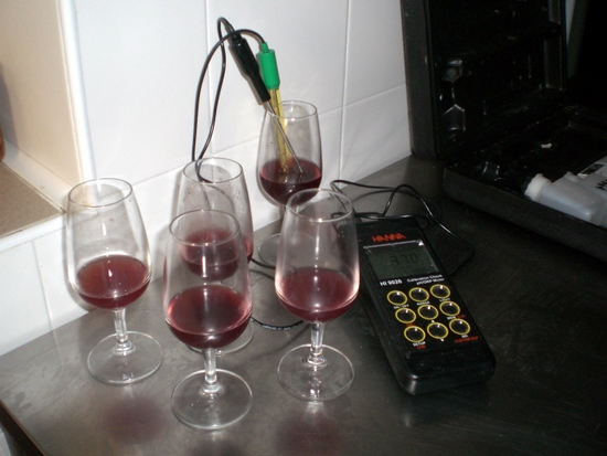 Measuring acidity of various grape juices at Tenuta Antica, Cessole